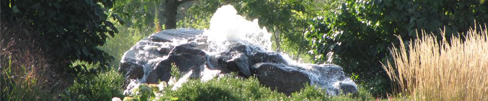 Congdon Gardens