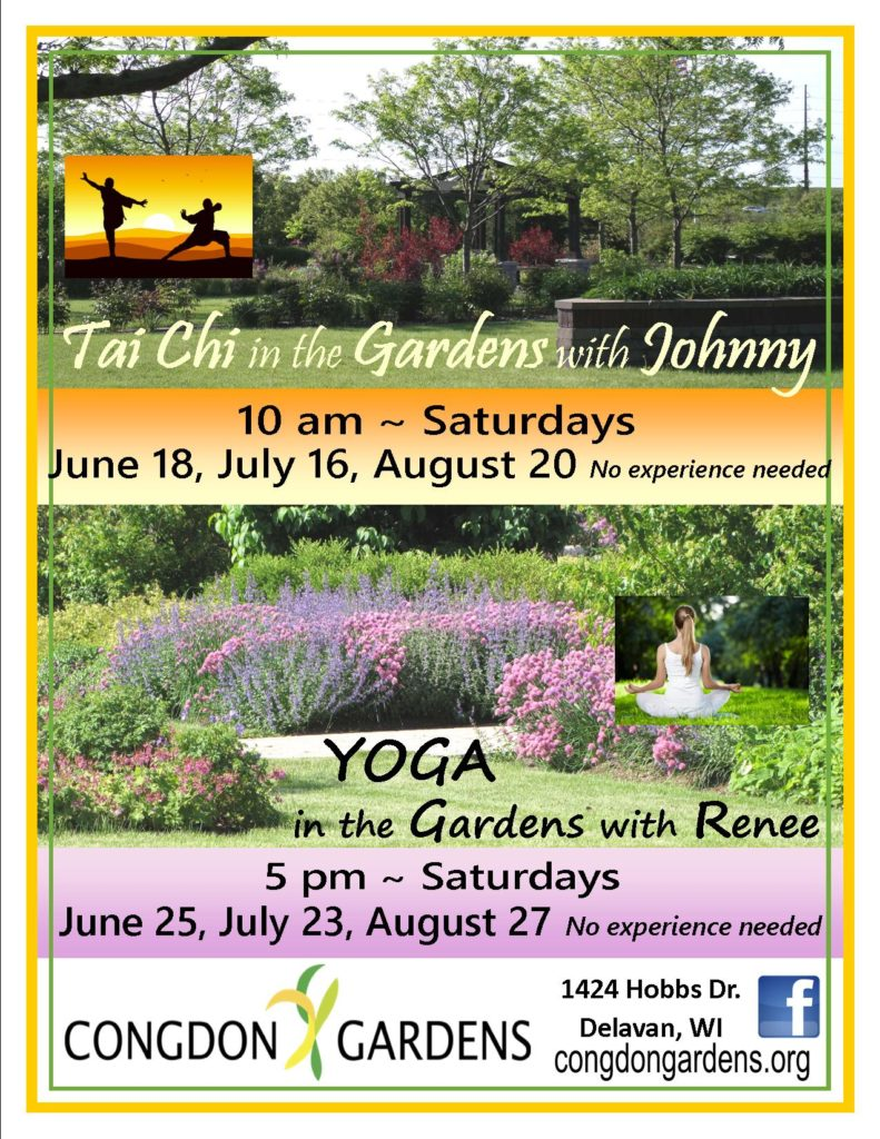 tiachi & yoga flyer